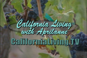 California Living ® TV host Aprilanne Hurley celebrates 13 years of delivering California Life & Style.