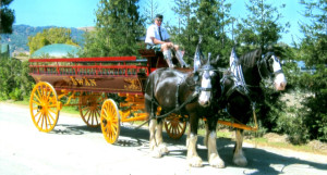 Experience the magic of a horse-drawn carriage ride during the Tiburon Holiday Festival on Dec. 5, 2015.