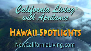 California Living ® takes Hawaii Travel to the Next Level