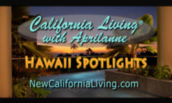 California Living ® spotlights Hawaii Island hopping to award winning islands this season.