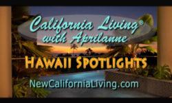 California Living ® spotlights Hawaii Island hopping to award winning islands this season.