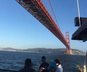 Escape to Alcatraz via the Golden Gate with Angel Island Ferry Alcatraz Cruises.